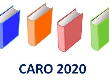 Analysis of newly added clauses of CARO 2020