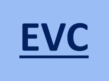 Companies can now file GSTR-3B through EVC mode