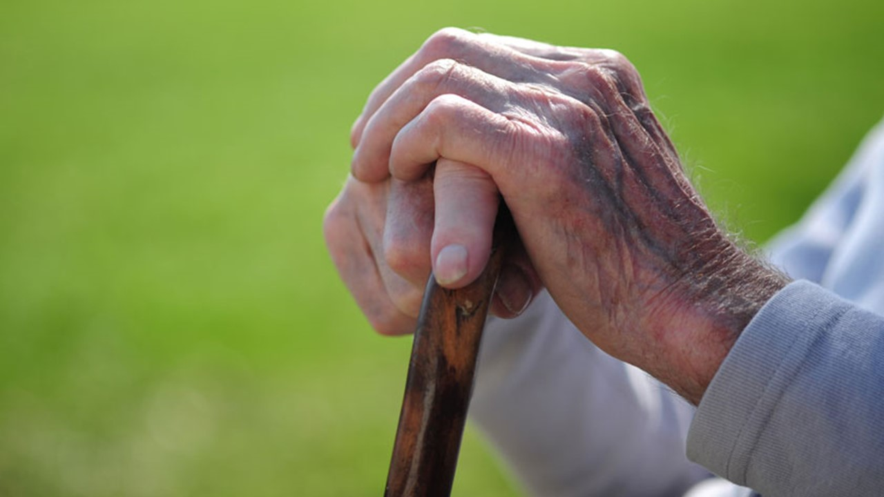 Will the exemption from ITR filing proposal for senior citizen will work